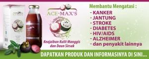 ace-maxs2